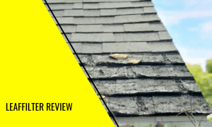 LeafFilter Review – Your Gutter Cleaning Solution?