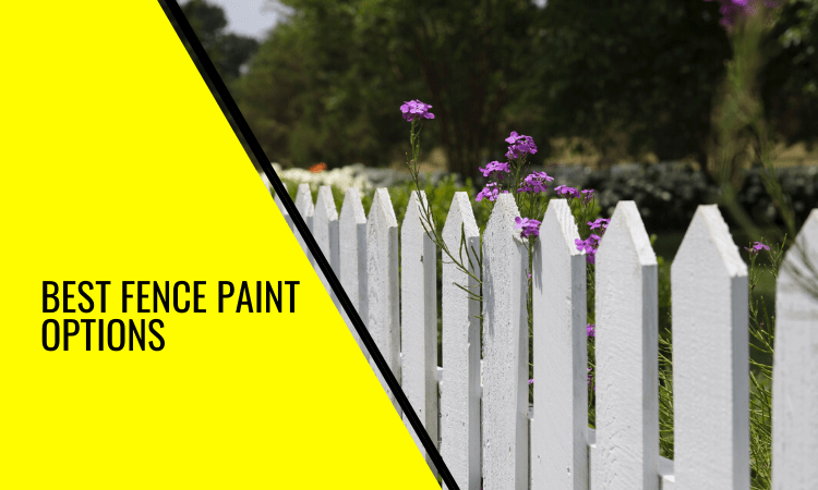 Best Fence Paint Options: All You Need to Know!