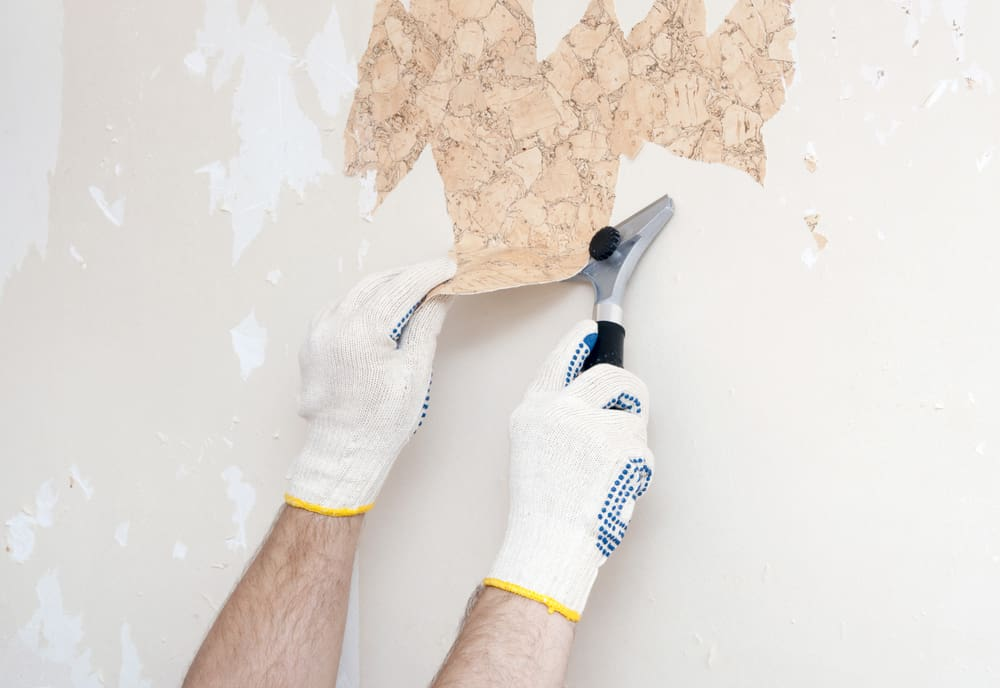blade paint scraper
